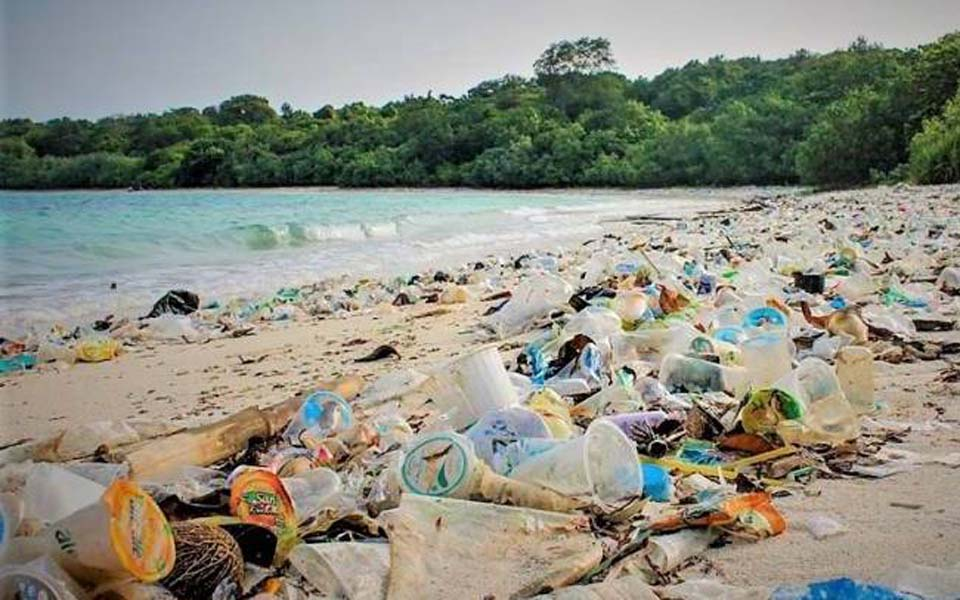 Plastic washed on Ujung Kulon National Park beach – December 3, 2017 (Oclean Indonesia)